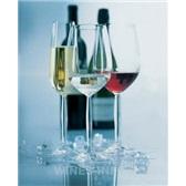 捷克诺纳无铅水晶杯 4022系列葡萄酒杯