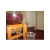 家用葡萄酒连续发酵罐