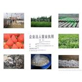 特价出售草莓苗。核桃苗,葡萄苗,.各类菇母种,原种,栽培种,