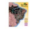 金砖四国之——教人费解的巴西葡萄酒