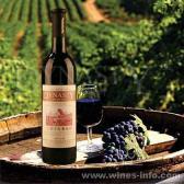 王朝2003干红葡萄酒
