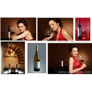 葡萄酒  葡萄酒品牌  中国十大品牌葡萄酒通天酒业面向全国火爆诚招代理商