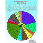 葡萄酒香气轮盘-Wine Aroma Wheel