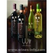 阿利菲尔葡萄酒代理,红酒加盟,红酒连锁,金海岸国际中国红酒招商...(原瓶进口)