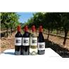 紅加州葡萄酒系列