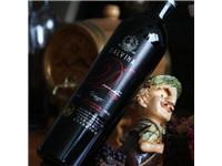 戴维娜韵丽干红葡萄酒
