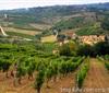 情迷意大利之坎帕尼亚(Campania)葡萄酒产区介绍