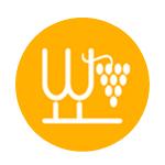 中国葡萄酒资讯网培训部