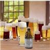 330ml埃赫蒙得白啤酒   Egmondse Witte