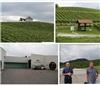 欧洲酒乡之旅——斯洛文尼亚Zlati Gric酒庄