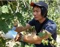 专访中山酒协顾问讲师谭永蕃:将葡萄酒文化融入大众生活
