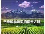 宁夏酿季葡萄酒探索之旅
