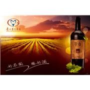 茅台葡萄酒全国空白区域招商