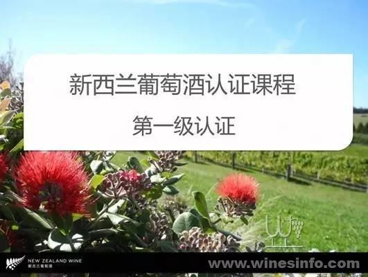 来自南半球的纯净——新西兰葡萄酒
