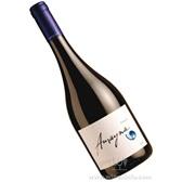 蓝色幻想西拉干红 智利总统国宴用酒高端葡萄酒 智利进口红酒排行榜 批发代理 原瓶原装进口红酒