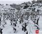 意大利西西里葡萄园喜迎大雪天气