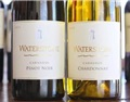 法国葡萄酒之王DRC为什么这么贵