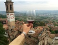 最有意思的意大利产区5-皮埃蒙特Piedmont