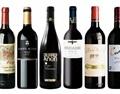 教你如何辨别真假西班牙葡萄酒