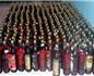 杰西丝·罗宾逊到访印度 称当地葡萄酒产业前景光明