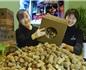 葡萄牙软木协会在华再度开启软木塞回收计划