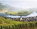美妙的德国酒庄之旅——摩泽尔产区篇