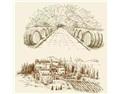 王德惠:葡萄酒企业,不要误读多品牌战略!