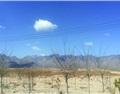 酒香贺兰山——走访宁夏贺兰山东麓葡萄酒产区