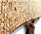 葡萄牙2016年软木出口刷新历史记录