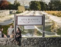 杰西斯·罗宾逊:新西兰新动向,自然葡萄酒的崛起