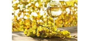 喝遍全球之1314葡萄酒与西餐文化篇