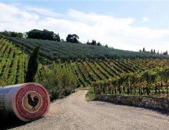Chinati葡萄酒意大利本土市场调查报告发布