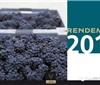 2017年香槟酿造葡萄总量确定