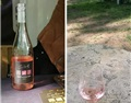 在匈牙利品酒