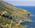 "Pantelleria离岛""奇遇记"""