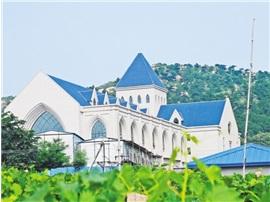 昌黎葡萄酒产业调查:从