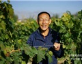 贺兰山东麓——令人肃然起敬的一个葡萄酒产区