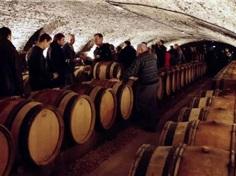 11月,来一场勃艮第葡萄酒拍卖会之旅吧!