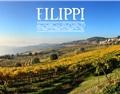 菲利皮酒庄 Filippi