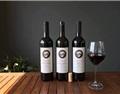 郭海冰:葡萄酒行业大单品思维是个误区