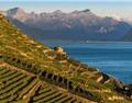 你或许从来没听说过的瑞士产区