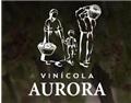 欧若拉酒庄 Vinícola Aurora