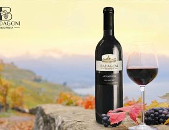 格鲁吉亚Badagoni葡萄酒在华赢得了商标权