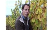 探秘法国著名的Baumard酒庄