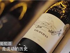 漫谈葡萄酒第二季 :第十期 宁夏葡萄酒的前世今生