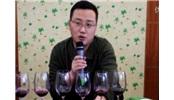 第五届新疆自酿葡萄酒交流会第一轮干红点评