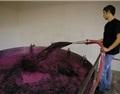 发酵中的萃取艺术——酒帽管理