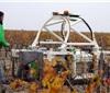 欧洲名庄葡萄园也使用机器人耕作