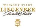 克林根堡酒庄 Weingut Stadt Klingenberg