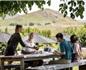 新西兰葡萄酒旅游受热捧